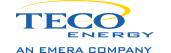TECO Services, Inc.   logo