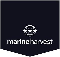 Marine Harvest Canada's