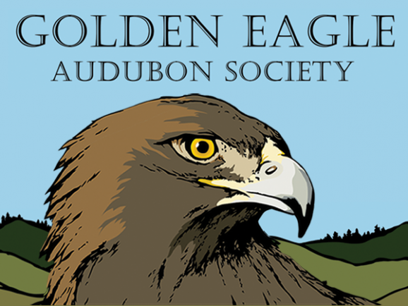 Golden Eagle Audubon Society logo