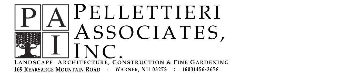 Pellettieri Associates Inc. 's Logo