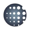 Anthem's Logo