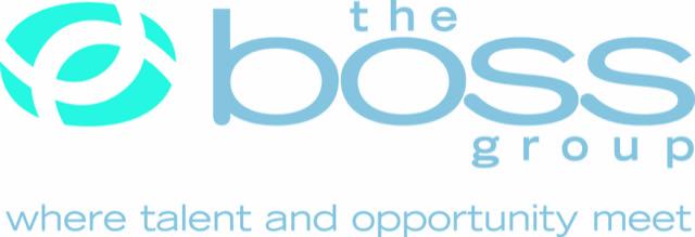 BLR Holdings, Inc's Logo