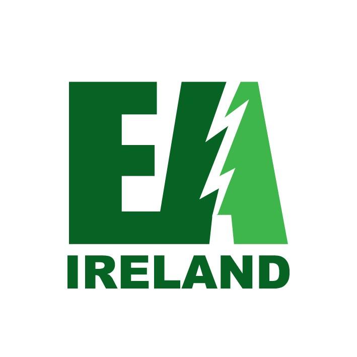 Electricity Association of Ireland's