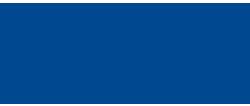 MSAE's logo