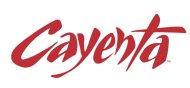 Cayenta logo