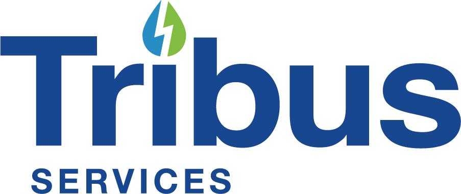 Tribus Services's Logo