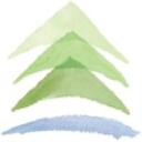 Pine River Institute logo
