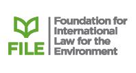 FILE Foundation