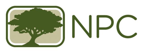 Ned Patchett Consulting Inc. Logo